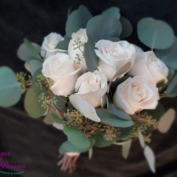 Silver Dollar & Roses