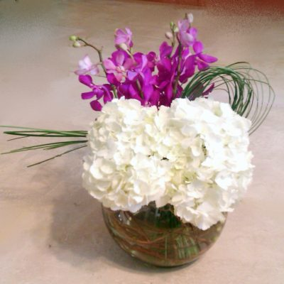 Bowl with Hydrangea & Orchid