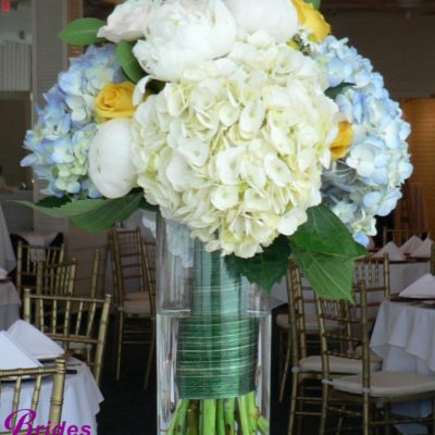 Brides N Blooms Designs, Hydrangea, Rose, Delphinium, Aster Ti Wrap