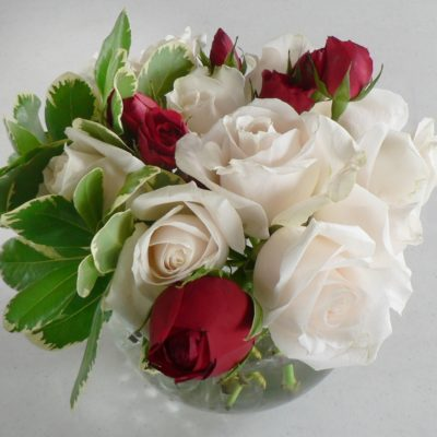 Red & White Rose Bowl