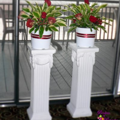 Brides N Blooms, Wholesale & Designs, Plants w/Red Flowers Ceremony Decor