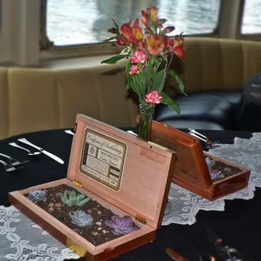succulents in cigar box