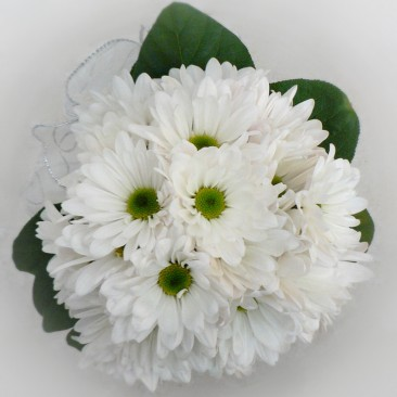 White Daisy Brides Bouquet