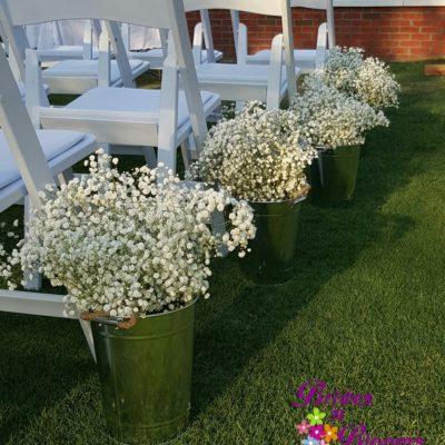 baby's breath pails