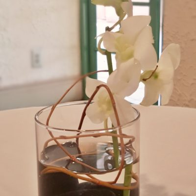 Small Hurricane Glass with Curly Willow & Orchids