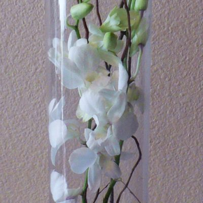 "20"" Tall Cylinder of Orchids & Curly Willow & Pebbles"