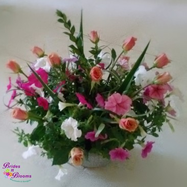 Sympathy Flowers with Plant